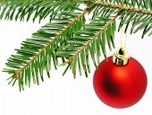 Red Ball Hanging From Christmas Tree