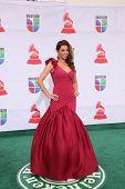 LOS ANGELES - NOV 10:  Lourdes Estefan arrives at the 12th Annual Latin GRAMMY Awards at Mandalay Ba