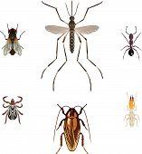 Nuisance_Bugs