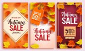 Autumn Sale Vector Poster Design Set With Colorful Maple Leaves Element In Background And Sale Disco poster