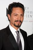 LOS ANGELES - JAN 29:  Benjamin Bratt arrives at the Valley Performing Arts Center Opening Gala at C
