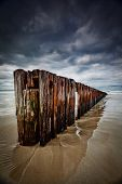 Old Timber Sea Fence Sand barrier to stop erosion