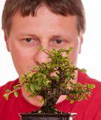 Man Is Looking At A Bonsai Tree