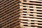 Lumber Drying in the Sun