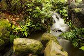 The Beautiful Waterfall In Garden