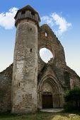 Ruins of cistercian church