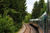 Zug durch Wald