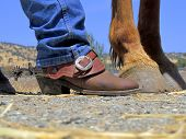 Boots, Spurs, Horse's Hooves