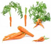 Collection of carrots