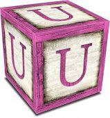 Alpha Block U Pink