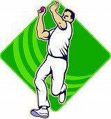 Cricket Bowler bola de boliche frente