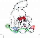 Bichon Frise Christmas Clipart