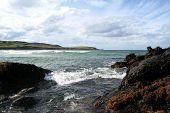 Scottish Bay