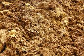 Pile Of Manure As Background
