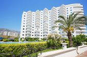 ALANYA - JULY 5: Palm and building of My Marine Residence residential complex, on July 5, 2012 in Al
