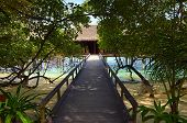 Pathway To Water Bungalow