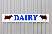 Sign On A Farm With The Word Dairy And Two Cow Illustrations