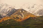 Polychrome Alaska