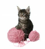Little Kitty With Two Balls Of Wool
