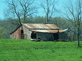 Spring Farm