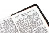 Bíblia aberta a Timóteo