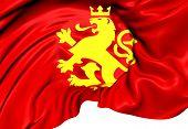 Athnic Macedonian Lion Flag