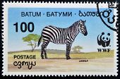 A stamp printed in Batumi shows zebra