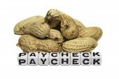 Peanuts And Paycheck