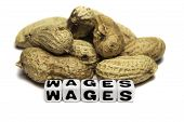 Peanuts And Wages