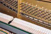 Internals Of A Piano