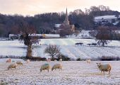 Wintertime in the Cotswolds