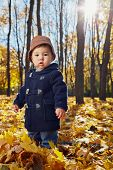 Portrait of little boy who stands in yellow fallen leaves in autumn park