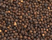 background of black pepper