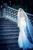 Beautiful bride walks up the stairs