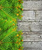 Green Branches Of Spruce On The Wooden Background.