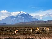 Stratovolcano El Misti Arequipa Peru