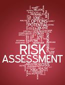 Word Cloud Risk Assessment