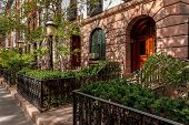 Chelsea Townhouses And Front Yards, Nyc