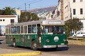 Trolley Bus