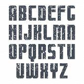 Sans Serif Font Sport