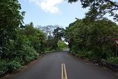 Tantalus Mountain One Lane Bridge