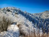 stock photo of blanket snow  - The Appalachian Trail near Charlie