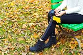 beautiful legs girl in black pants and boots with yellow leaves in the hands of sitting on the bench