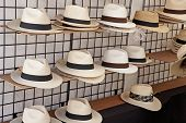 Havana Hats On Display