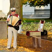 Street Musician In Vilnius City Cathedral Place