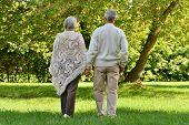 Senior couple in autumn forest