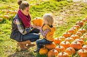 Mother And Child Choosing Pumpkins