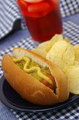 foto of hot dogs  - An all american hot dog - JPG