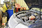 picture of hoods  - Under the hood of the car - JPG