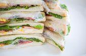 foto of sandwich wrap  - Sandwich in plastic wrap for picnic - JPG